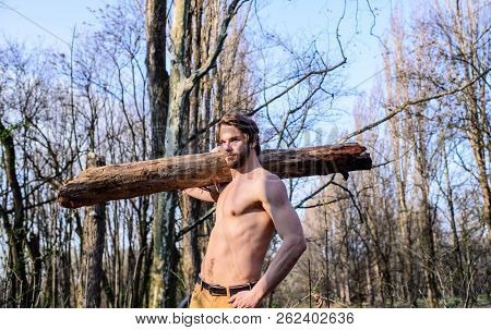 Strength And Power. Man Brutal Strong Attractive Guy Collecting Wood In Forest. Lumberjack Or Woodma