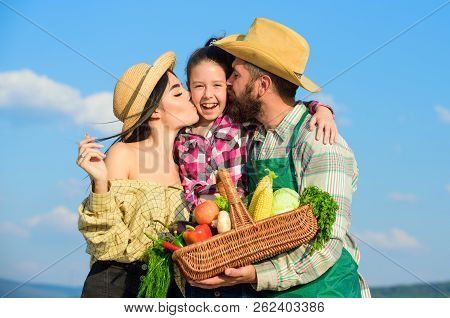 Family Gardening. Family Farm Concept. Parents And Daughter Farmers Celebrate Harvest Holiday. Famil