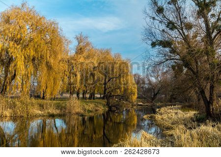 Beautiful River With Trees Reflection In The Water In The City Park On A Sunny Fall Day