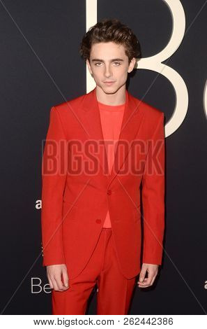 LOS ANGELES - OCT 8:  Timothee Chalamet at the