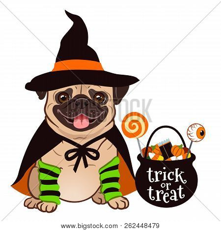 Halloween Pug Dog Vector Cartoon Illustration. Cute Chubby Sitting Pug Puppy In Witch Costume With B