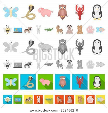 An Unrealistic Cartoon Animal Icons In Set Collection For Design. Toy Animals Vector Symbol Stock We