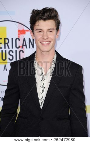 Shawn Mendes at the 2018 American Music Awards held at the Microsoft Theater in Los Angeles, USA on October 9, 2018.