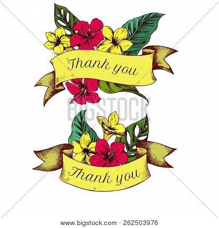 Ribbon Design Of Allamandas With Thank You Sing. Hand Drawn Vector Illustration