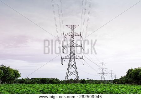 Transmission Line Of Electricity To Rural Field, Electricity Pole On Agriculture Area, High Voltage