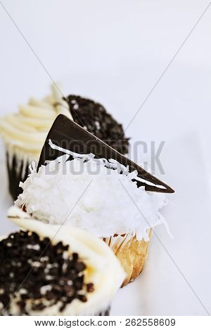 Pretty Coconut Frosted Cupcake Decorated With A Wedge Of Dark Chocolate. Extreme Shallow Depth Of Fi