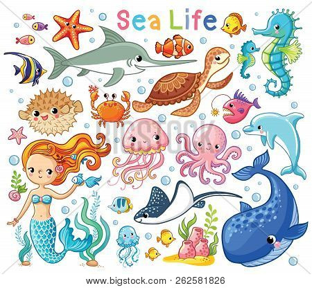 Vector Set With Sea Animals And A Mermaid. Collection Of Marine Inhabitants