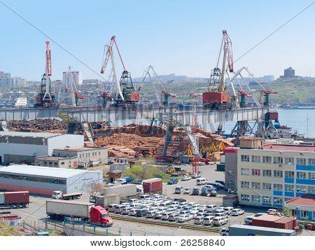 timber export at russian cargo port Vladivostok