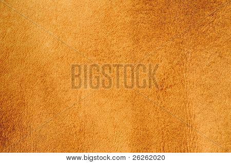 burned leather background