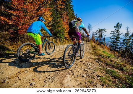 Mountain biking woman and man riding on bikes at sunset mountains forest landscape. Couple cycling MTB enduro flow trail track. Outdoor sport activity. poster