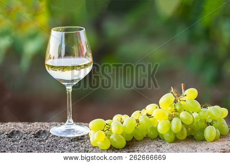 A Glass Of White Wine With Grapes, Outdoor