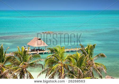 Isla Contoy, Mexico, bird eye view poster