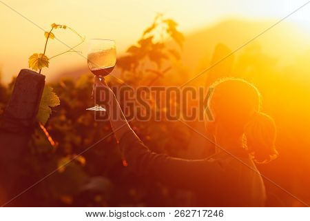 Happy Woman Looking At A Glass Of Wine In The Vineyard Of The Alazani Valley. Georgia (country)