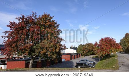 Umea, Sweden On August 28. View Of Colorful Trees This Side Buildings In A Residential Area On Augus