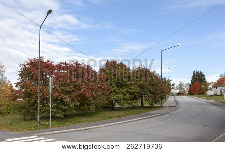 Umea, Sweden On August 28. View Of Colorful Trees Beside A Street In A Residential Area On August 28