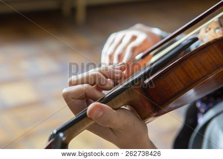 Hand On The Strings Of A Violin