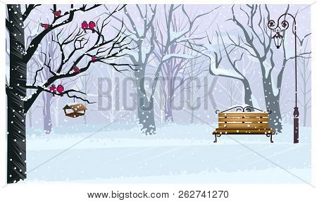 Winter Landscape With Snowy Park Vector Illustration. Forest With Bullfinches On Tree, Bench And Str