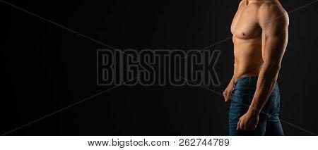 Creator Bodybuilder Image Photo Free Trial Bigstock