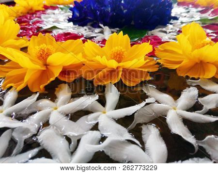 Spa Tropical Flowers Background Arranged In The Water