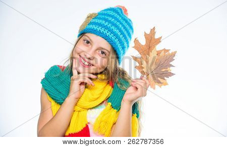 Girl Cute Face Wear Knitted Autumn Hat And Scarf Hold Leaves White Background. Autumn Leisure Idea.