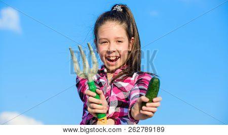 Gardening Activity. Little Girl Gardener Work At Family Farm. Kid Cheerful Gardener Holds Rake And C