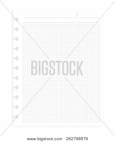 Hole Punched Squared Filler Paper Sheet For Disc Binder, Realistic Vector Mockup. Letter Size Writin