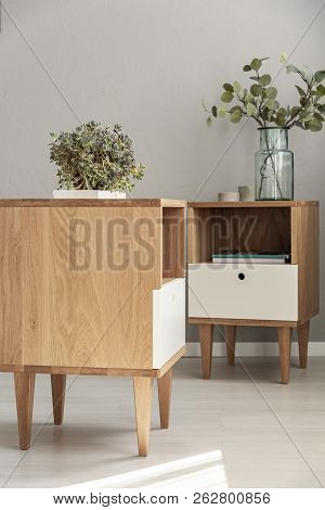 Close-up Of A Side Of A Cabinet And Cabinet In The Background With Plants