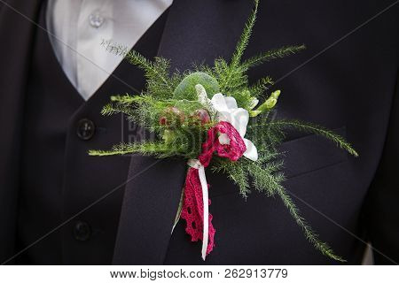 Close Up Of A Wedding Boutonniere On The Bridegroom Suit. The Groom Chest With Green Twigs And Red B