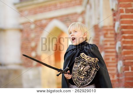 Portrait Of A Cute Little Boy Dressed As A Medieval Knight With A Sword And A Shield. Medieval Festi
