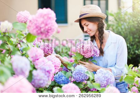 Gardening In Bushes Of Hydrangea. Girl With Smile Is Working In Sunny Country Garden. Flowers Are Pi