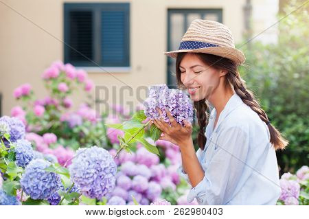 Gardening In Bushes Of Hydrangea. Girl Smiles In Sunny Summer Country Garden. Flowers Are Pink, Blue