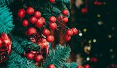 Christmas decoration of big bright ripe red berries and lustrous baubles on green fir tree branches and sparkling lights on dark background poster