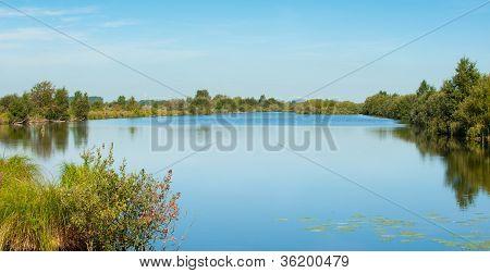 Wetland Lanscape