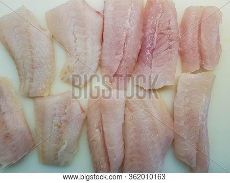 The Red Snapper Sebastes Norvegicus Fish Filet
