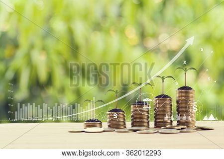 Finance And Business Concept: Double Exposure With Business Charts Of Graph And Green Sprout On Arra