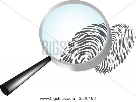 Magnify A Fingerprint