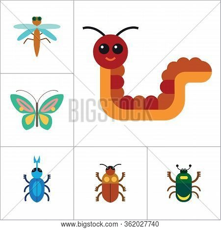 Insects Icon Set. Ladybird Bee Beetle Mosquito Fly Brown Mite Butterfly Blue Beetle Mite Caterpillar