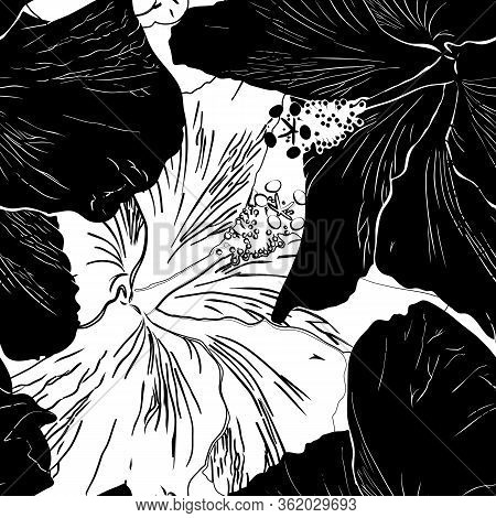 Seamless Pattern With Hibiscuses. Black And White Silhouette. Good Design For Textile, Wrapping Pape