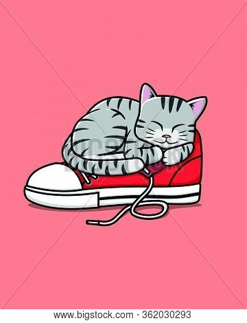 Simple Vector Illustration Of Gray Cat Sleeps On Red Sneaker Shoe