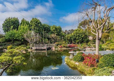 Usa Gardens. Pond Bridges. Earl Burns Miller. Japanese Garden. Long Beach Trees Shrubs.
