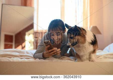 Joyful Smiling Girl Lying On Bed In Bedroom With Her Cute Welsh Corgi Dog, Holding Smartphone.