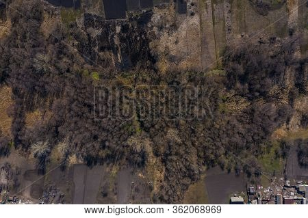 Small Stream In Morning Forest With Swamp. Drone Landscape Of European Forest From Above. Central Ru