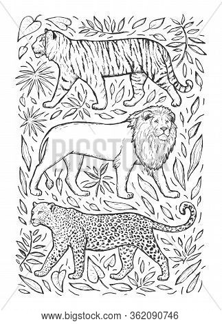 Leopard, Tiger And Lion Vector Hand Drawn Sketch. Wild Animals And Leaves Isolated On White Backgrou