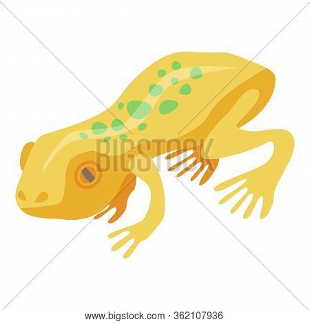 Yellow Exotic Frog Icon. Isometric Of Yellow Exotic Frog Vector Icon For Web Design Isolated On Whit