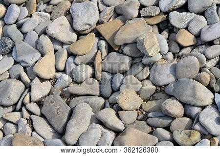 Natural Pebble Background. Gray Pebbles Close-up. Natural  Background.