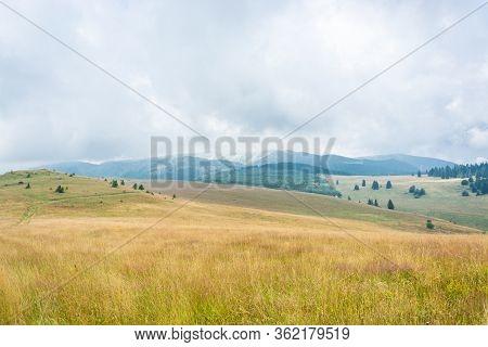 Foggy Morning Hills