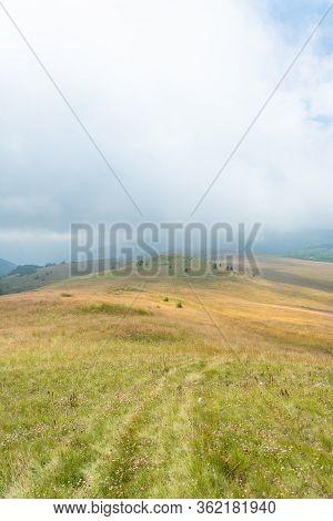 Yellow Hill