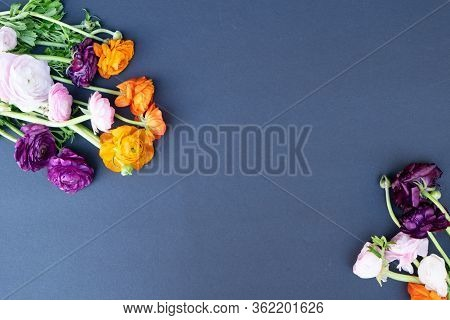Flowers Composition. Floral Composition Made Of Fresh Ranunculus Flowers On Black Background. Flat L