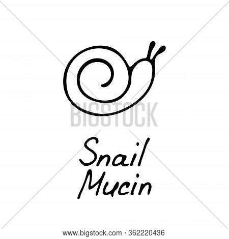 A Snail Icon For Use In Cosmetic Designs. A Hand-drawn Snail Icon. A Simple Logo. Vector