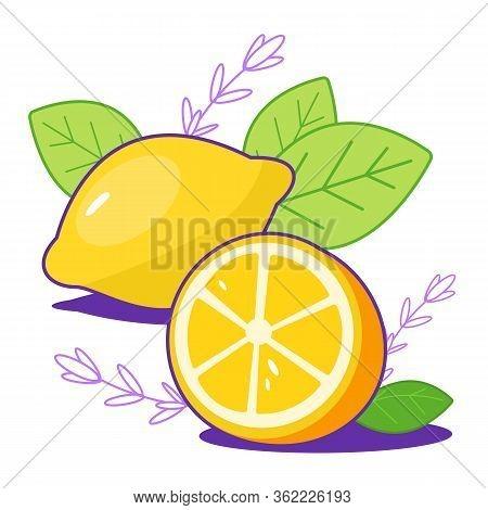 Bright Fresh Lemons With Leaves. Citrus, Half Of Lemon, Chopped Lemon. Cut Lemon Slice. For Print, W